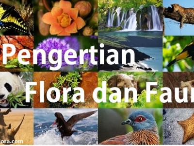 Apa Sih Pengertian Dari Flora Dan Fauna