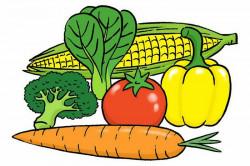 3 Fungsi Sayuran dalam Masakan