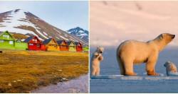Mengintip Kota Arktik Longyearbyen di Norwegia yang Melarang Warganya Meninggal. Apa Alasannya?