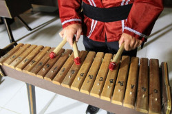 Alat Musik Tradisional Beserta Cara Memainkannya
