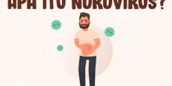 Apa itu Norovirus dan Bagaimana Gejalanya?