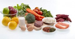 Uji Makanan (Amilum, Glukosa, Protein, dan Lemak)