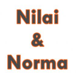 Pengertian Nilai dan Norma